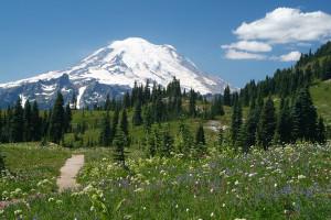 Mt Rainier in summer