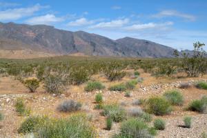 Nevada countryside_web